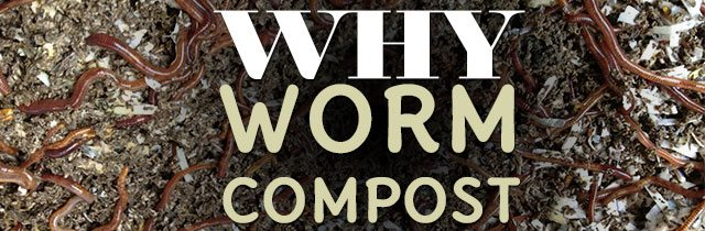 Why Worm Compost?