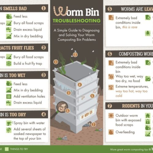 worm factory coupon code