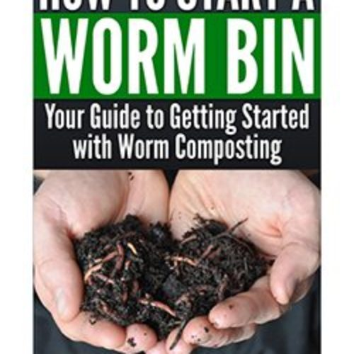 Regulating Temperature in a Worm Bin – Worm Composting Headquarters