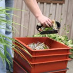 Can you add grass clippings to a worm bin?